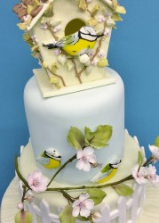 Bird House Cake Design 4