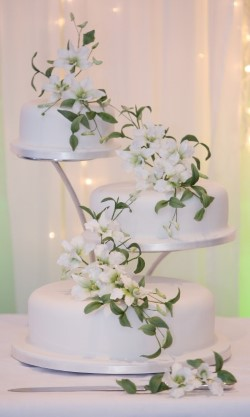 Wedding Cake PamTony